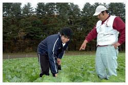 野菜を作る阿部さん