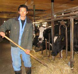 牛舎で作業の合間に