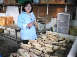 人との出逢いに守られて 安﨑三代子さん(48)=徳島県藍住町