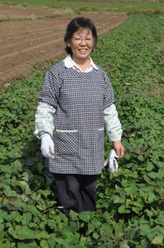 私の農業人生 金丸洋子さん(64)=宮崎県西都市