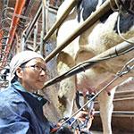 家族で支えあって 酪農家、坂手美智子さん(57)=岡山県津山市