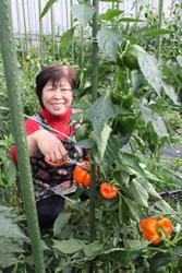 私の元気届けます! 池田容子さん(60)=埼玉県所沢市