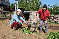 四頭の仔豚(こぶた)から 相原海さん(33)=神奈川県南足柄市