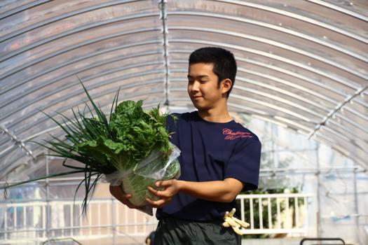 牧石青ネギで地域を元気に 今井 優成さん=岡山県立高松農業高校1年