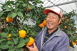 『やればできる』柑橘で宝の島〝釣島〟に 山岡 建夫さん(61)=松山市