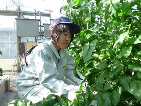 持続可能な農業を目指して 鈴木理硫さん(16)=愛知・鶴城丘2年