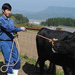 地域に貢献できる畜産人を目指して 若杉大輔さん=大分県立玖珠美山高3年