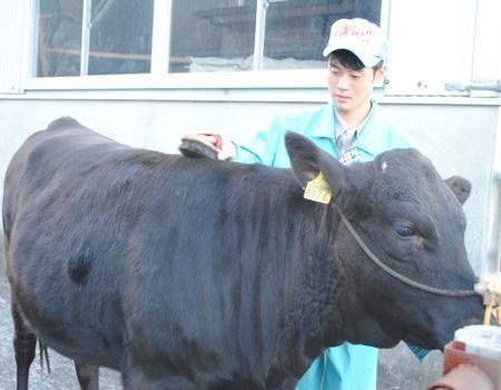 牛飼いになりたい 若杉将太郎さん(18)=大分・玖珠農業3年