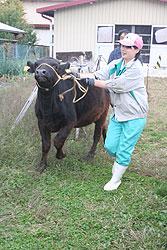 『じゅえり』がつないでくれた道 今村窓香さん(18)=長野・下伊那農業3年
