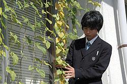 ふるさとのすばらしさを伝えたい 早川義希さん(17)=兵庫・篠山東雲2年
