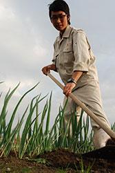 廃棄チーズを用いた土壌改良の試み 水野 宏紀さん(17)=兵庫・県立農業高校3年