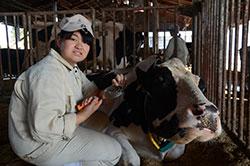 産声をあげた女子高生家畜人工授精師 砂田 智子さん(18)=岡山・高松農業高校3年