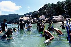 シュノーケリングの練習をして、海の体験学習に臨む子供たち(黒潮実感センター提供)