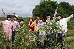 耕作放棄地を再生してブルーベリーを植えた畑で記念撮影するメンバーら=山口県宇部市で2014年6月(学生耕作隊提供)