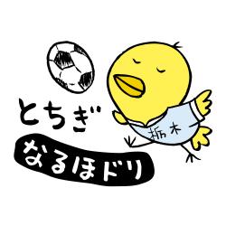 栃木なるほドリ サッカー