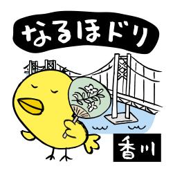香川なるほドリ