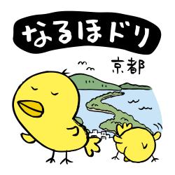 舞鶴なるほドリ