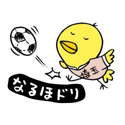 埼玉なるほドリ