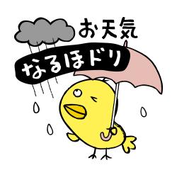 お天気雨なるほドリ